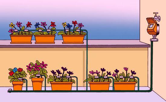 Irrigazione da terrazzo e balcone