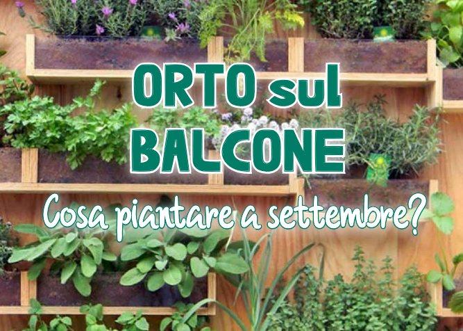 Orto sul balcone: cosa piantare a settembre?