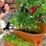 Vasi e contenitori per orto su balcone