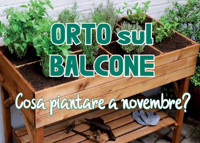 Orto balcone novembre