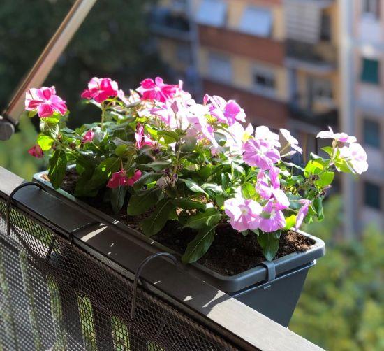 Portafioriera da balcone