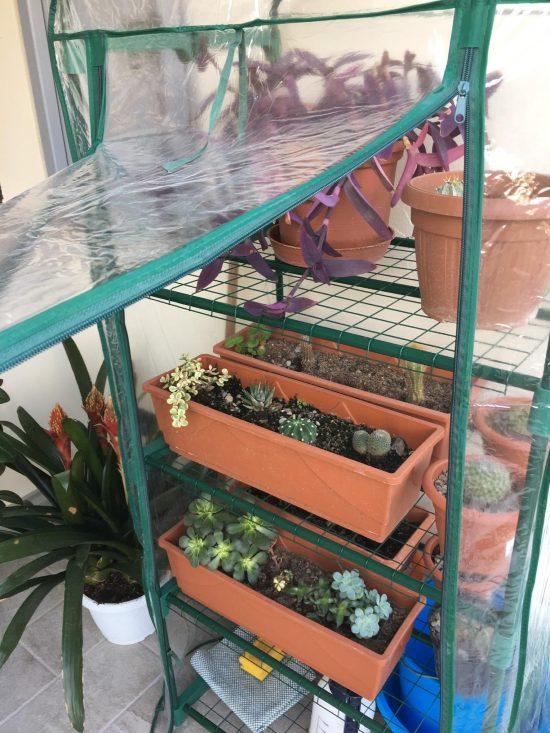 serra da balcone PVC